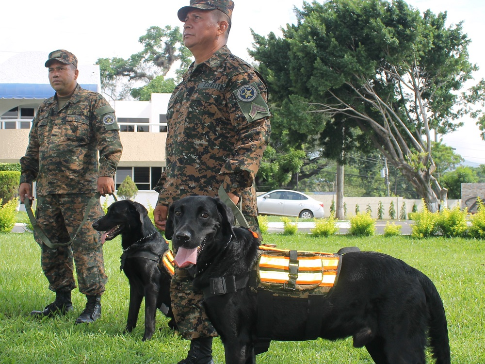 Salvadoran Canines Strengthen Counternarcotics Tasks