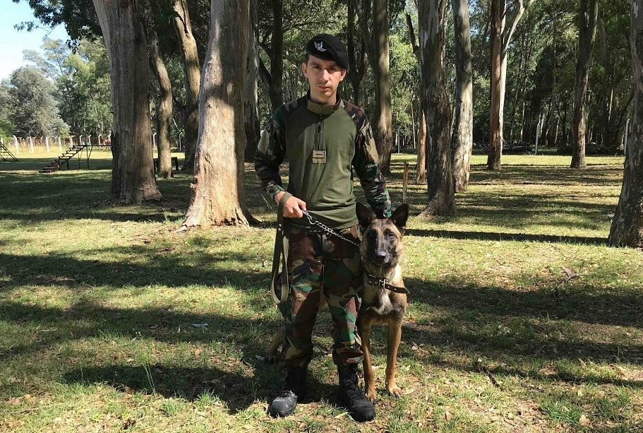 Argentine Air Force Trains Dogs for Security and Defense Tasks