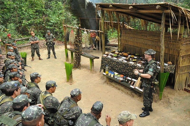Brazilian Indigenous Service Members: Essential Assets of the Armed Forces