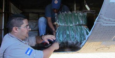 Honduras Joins International Humanitarian Aid Effort for Haiti