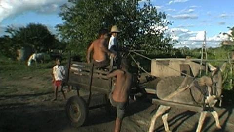 Brazil, India, South Africa, Lead Effort Against Child Labor