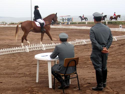 Chilean Military Personnel Distinguish Themselves at International Equestrian Competition