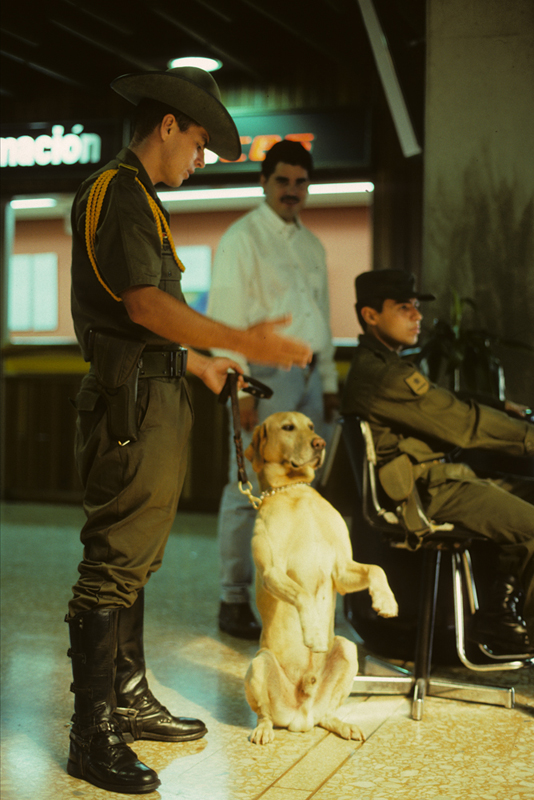 Dogs Play Increasingly Vital Role in South American Police Operations