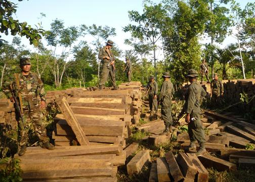 Nicaraguan Army Conducts Operation Green Gold to Protect the Environment