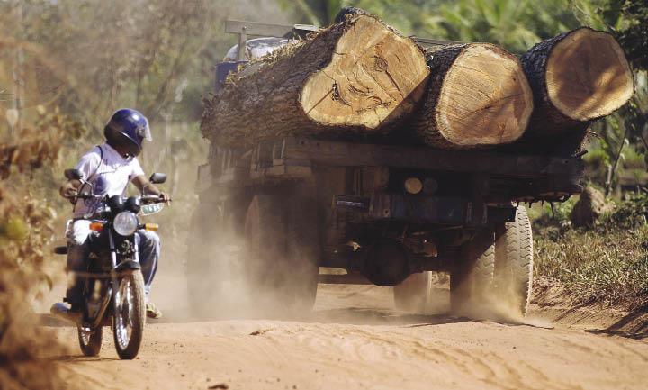 Brasil: Forest Protection Goes Digital