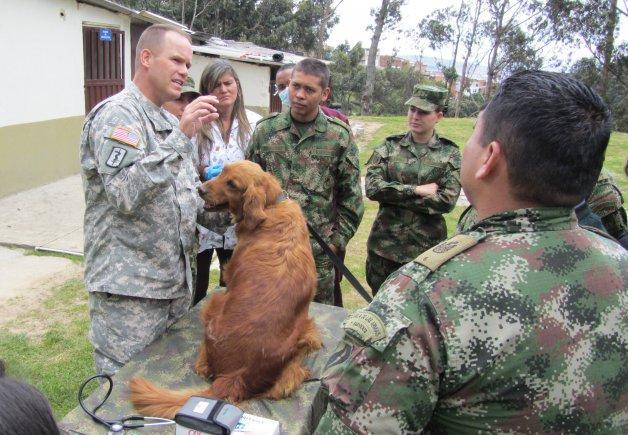 Partner Nations Exchange Knowledge on Working Dog Programs