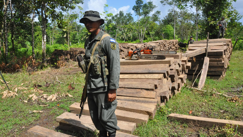 Nicaraguan Army BECO Soldiers Brave Deadly Threats to Protect the Nation's Ecology
