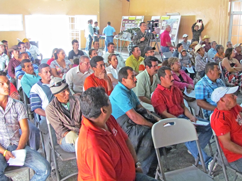 Honduran Armed Forces Work with Civilians to Protect and Restore Forests