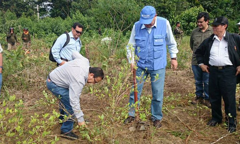 Reduction of Illegal Crops through Social Responsibility