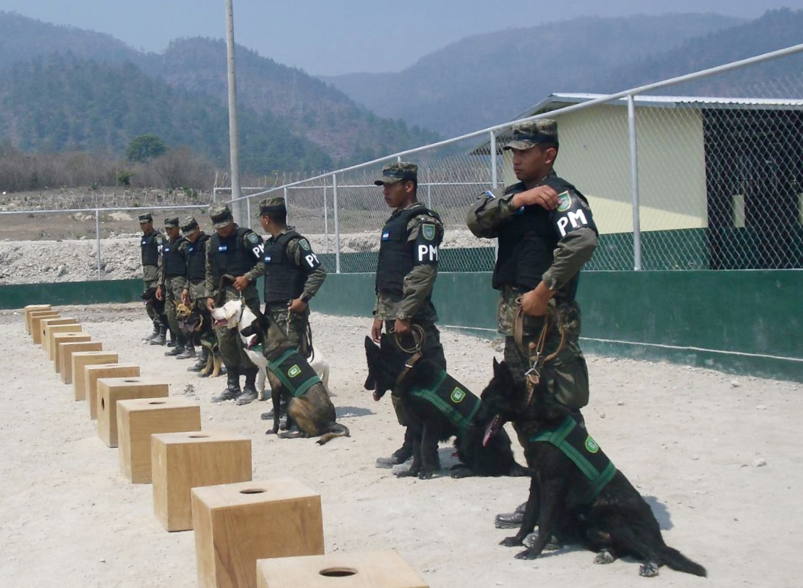 Honduras Unleashes Armed Forces' First Canine Battalion To Fight Crime