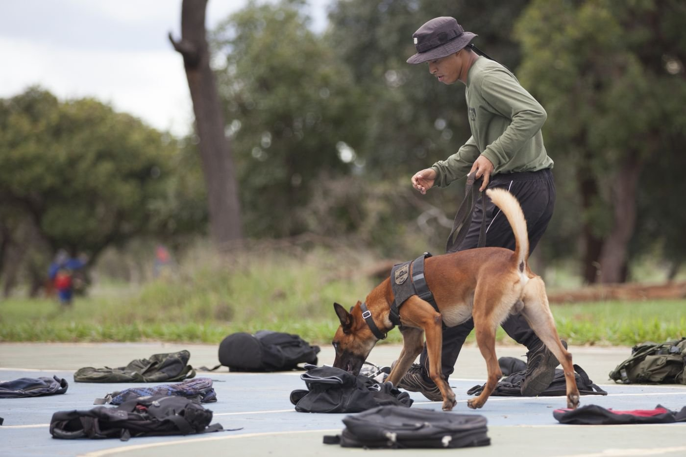 Brazilian Air Force Dogs Help Security Forces Sniff Out Drugs, Explosives, Weapons