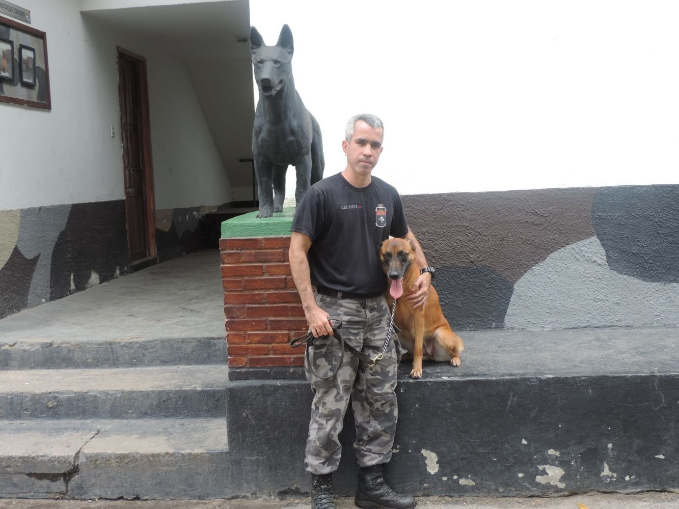 Military Police Dogs Train for Rio Olympics 2016