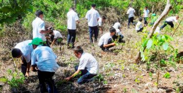 Fuerzas militares de cinco países se unen contra la narcodeforestación