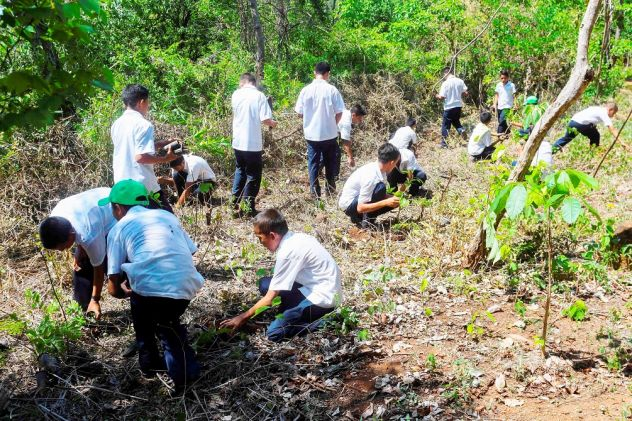 Military Forces of Five Countries Join Efforts Against Narco-deforestation