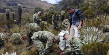 Colômbia lança ofensiva militar contra desmatamento
