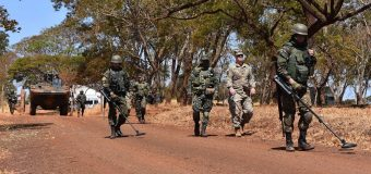 New York National Guard and Brazilian Army Carry Out Explosive Devices Neutralization Experience Exchange