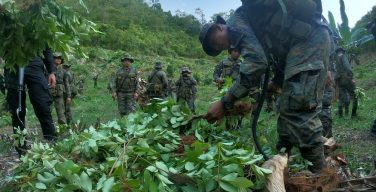 New Narcotrafficking Method In Guatemala