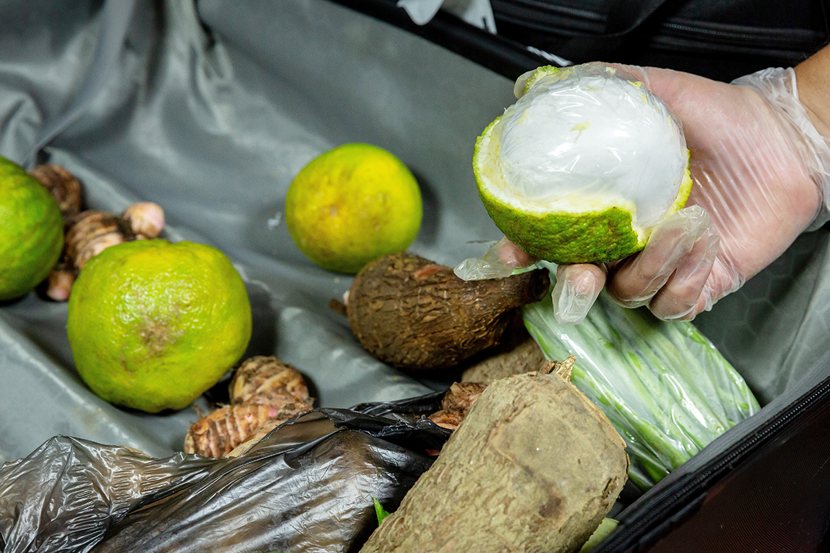 Surgical Masks and Fruits Used to Transport Drugs Amid Coronavirus Pandemic
