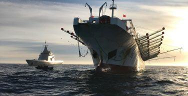 Argentine Navy Captures Chinese Vessel Fishing Illegally