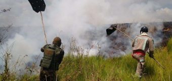 Armed Forces Promote Operation Green Brazil 2 to Combat Amazon Deforestation