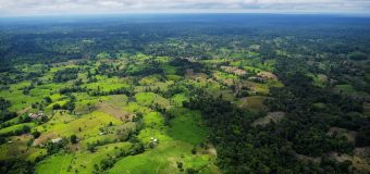 Illicit Drug Production Destroys Colombian, Peruvian Ecosystems