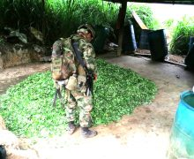 Two Illegal Drug Labs Dismantled in Catatumbo, Colombia