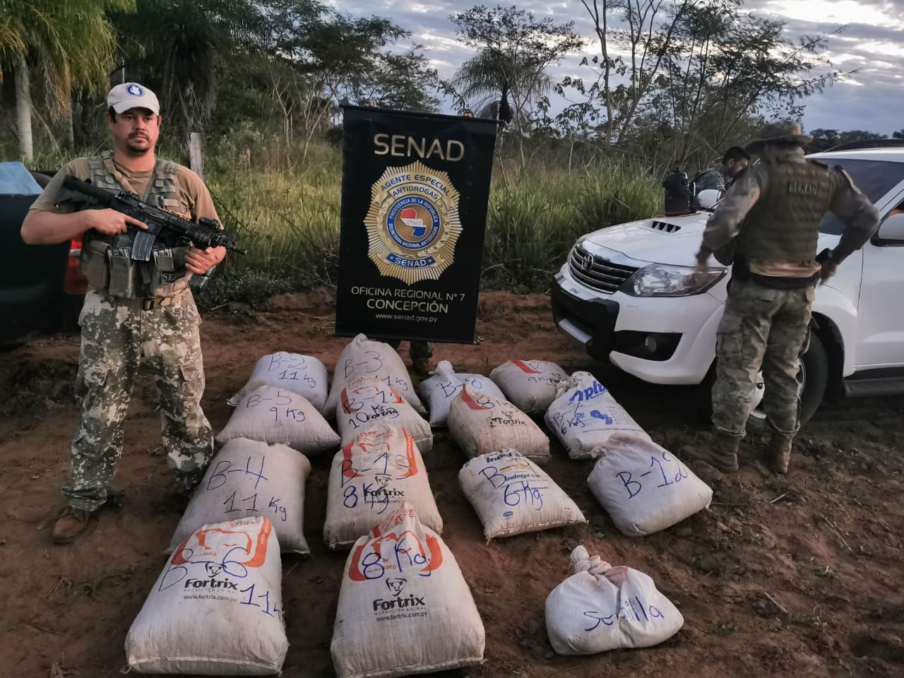 Paraguay: Narcotics Agents Destroy More than 9 Tons of Marijuana Bound for Brazil
