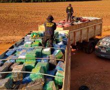 Operação Hórus apreende mais de 33 toneladas de maconha