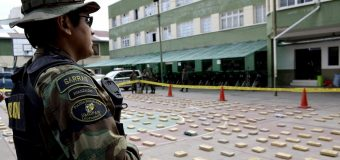 Bolivia Seizes Nearly 453 Tons of Drugs in the Last 11 Months