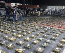Paraguay Carries Out Record Cocaine Seizure
