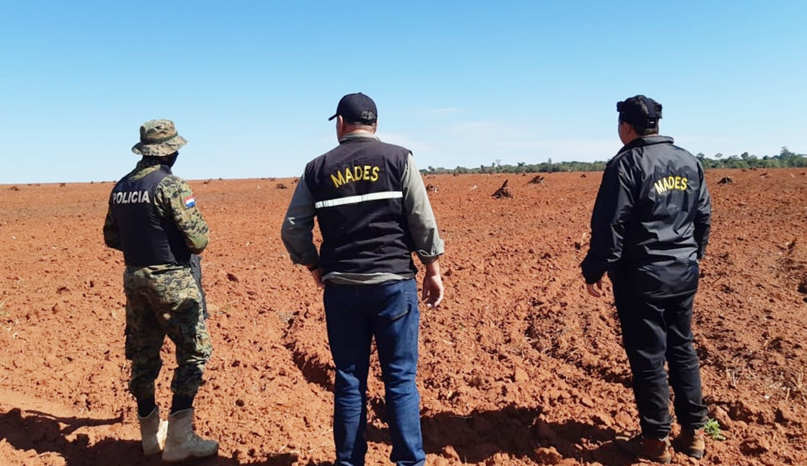 Narcotrafficking Threatens Atlantic Forest in Paraguay