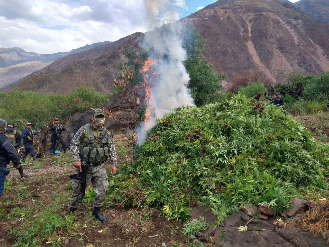 Peruvian Armed Forces Destroy Marijuana Plantations and Clandestine Labs