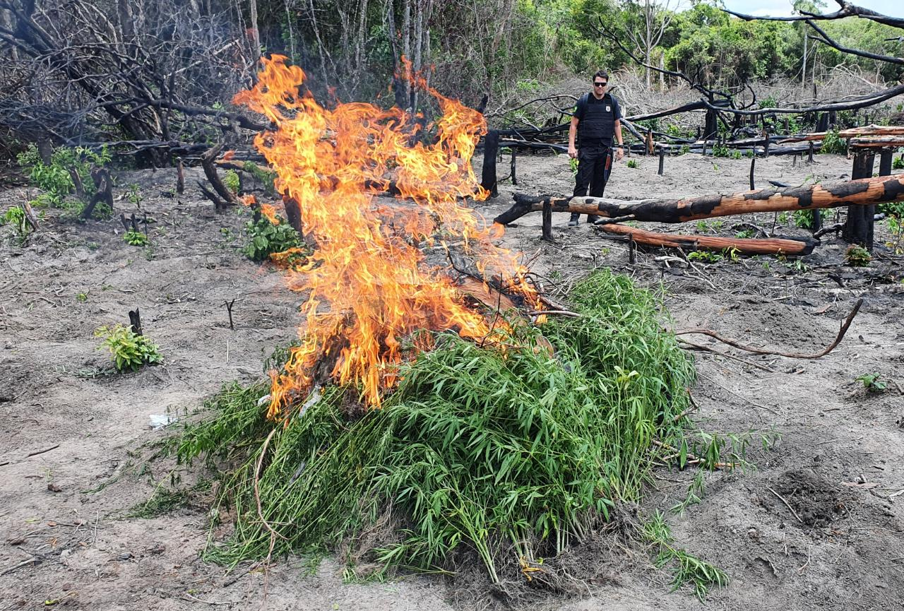 Service Members Combat Illegal Activities in Brazil, at the Suriname and French Guiana Borders