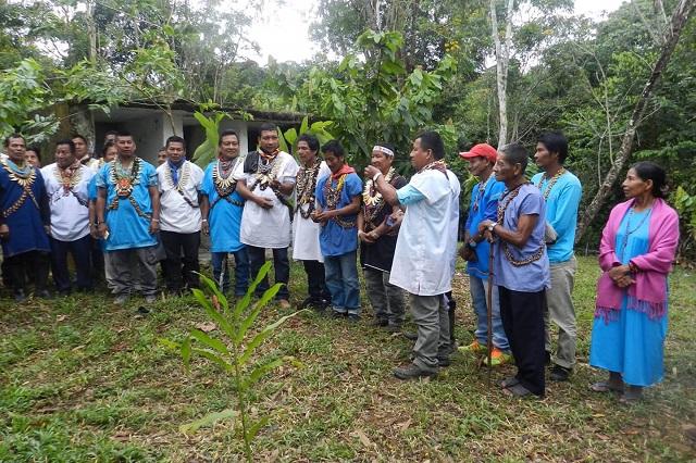 Comunidad Siona de Ecuador y Colombia en peligro de extinción por el narcotráfico