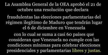 Venezuela: Resolución de la OEA