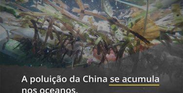 As práticas de pesca não regulamentadas e a poluição descontrolada por parte da China estão devastando o meio ambiente mundial