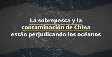 La sobrepesca y La contaminación de China perjudican los océanos