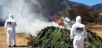 Chilean Police Attack Drug Production