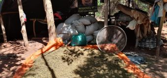 Paraguayan Anti-Drug Agents Conclude 2020 Dealing Blow to Narcotrafficking on Brazilian Border