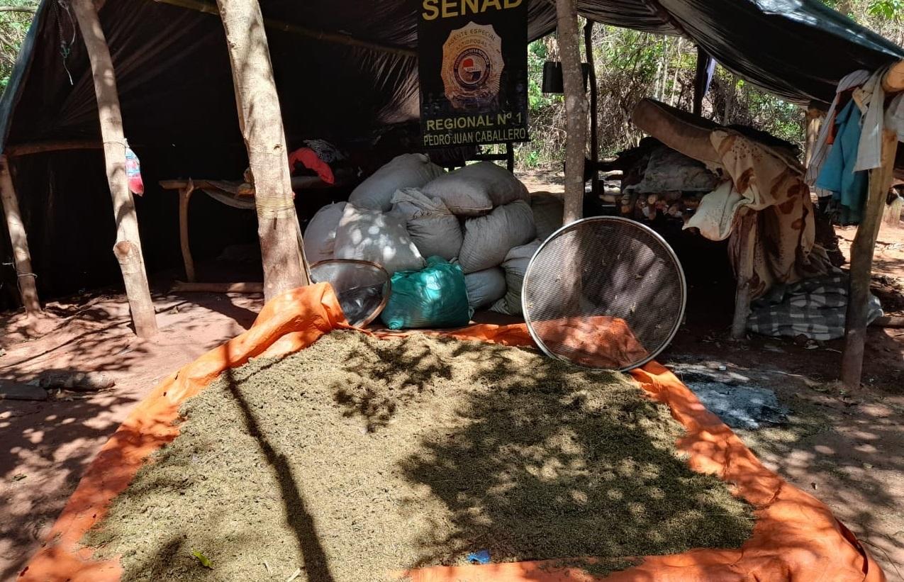 Agentes antidrogas do Paraguai fecham 2020 com golpe contra o narcotráfico na fronteira com Brasil