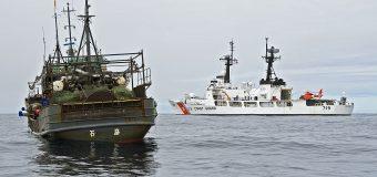 Los graves efectos de la pesca ilegal