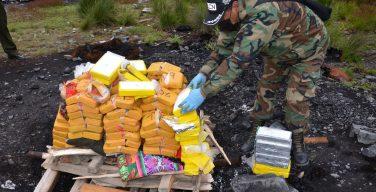 Bolívia: agentes antinarcóticos destroem mais de 2 toneladas de drogas