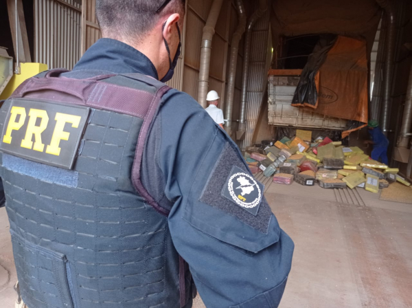 Brazil: Security Forces Seize More than 4 Tons of Marijuana