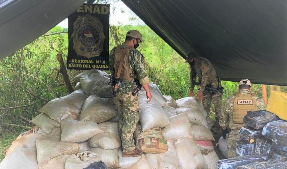 Paraguay: Anti-Drug Agents Seize Nearly 9 Tons of Marijuana