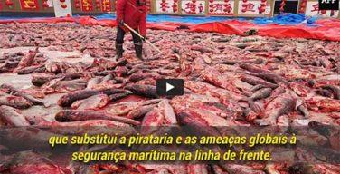 A pesca INN afeta todos