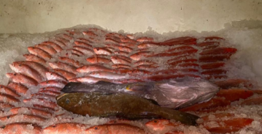 Marina incauta embarcación venezolana por pesca ilegal encostas de Amapá