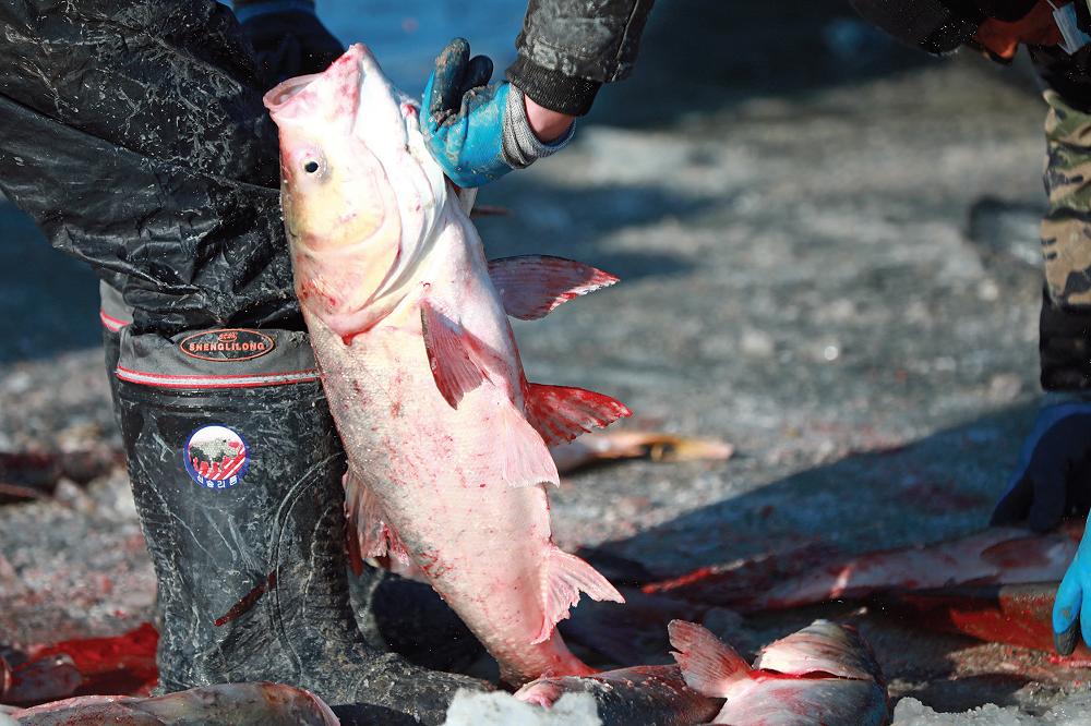 La agresiva pesca de China en el mundo depreda los océanos a nivel global