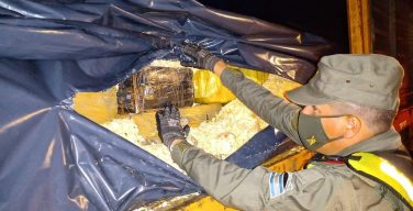 Argentina incauta más de 12 toneladas de droga en dos semanas