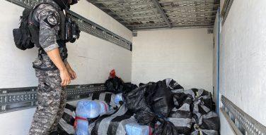 Fuerzas de seguridad de Chile incautan 4 toneladas de drogas en dos operativos