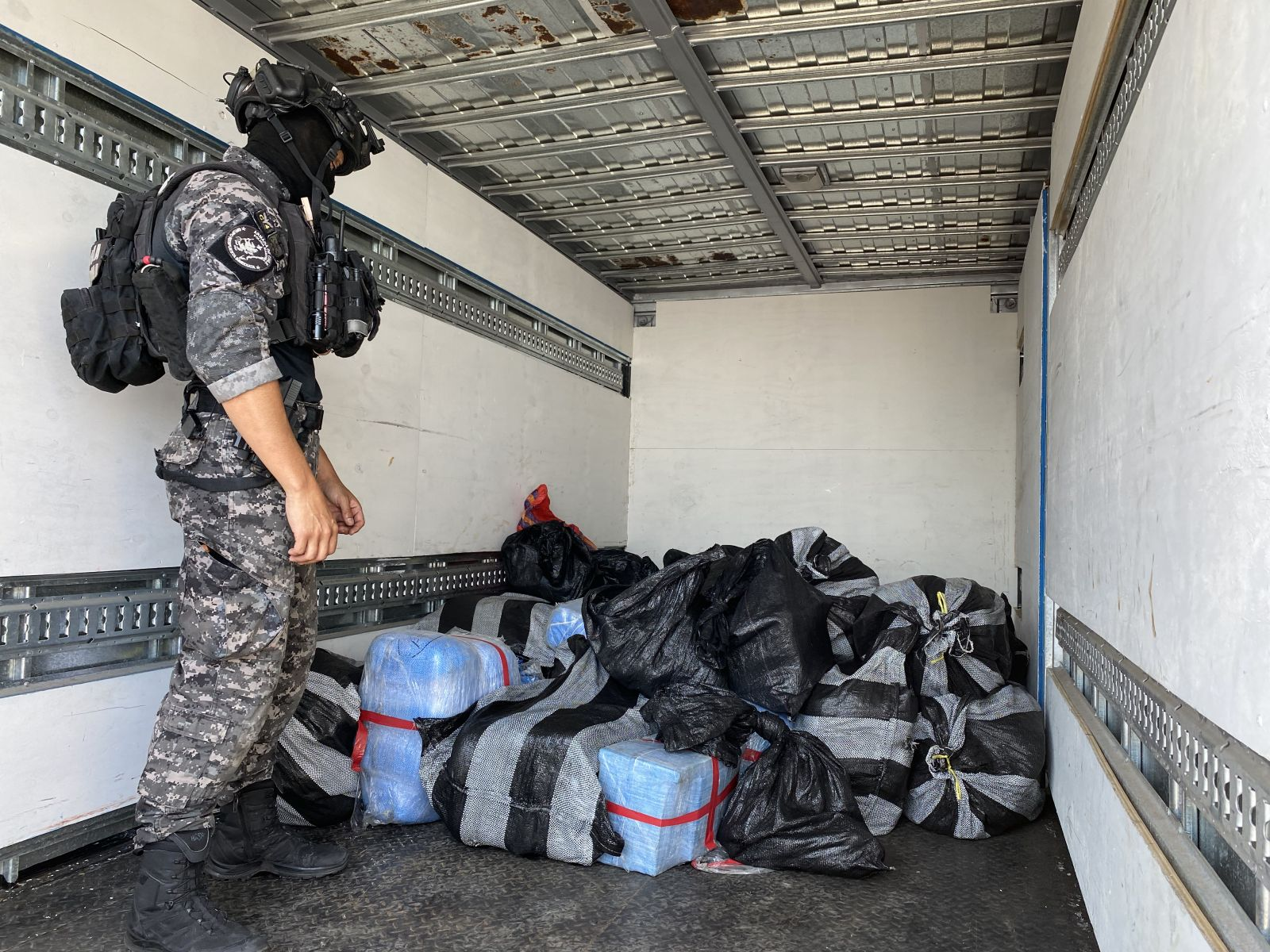 Chilean Security Forces Seize 4 Tons of Drugs in 2 Operations